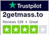 Vertrauenspilot