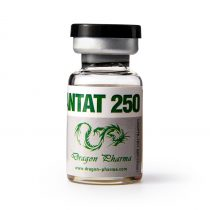 250 Enanthate 10ml Dragon Pharma