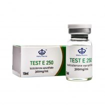 250 Test 10ml vial Maha Pharma